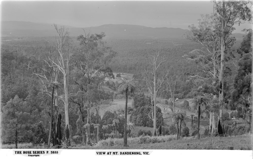 Sassafras Gully Australia  City new picture : View from Mt. Dandenong. Rose Stereograph Series. Courtesy of The ...