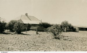 Arrabury Station 1930. Photo Courtesy of the State Library of South Australia