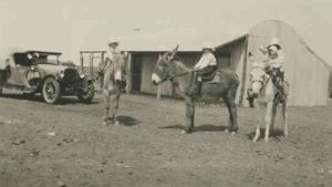 Four Children on Donkeys. Arrabury Station approximately 1925. Photo Courtesy of the State Library of South Australia